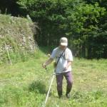 そば畑の下草刈り1